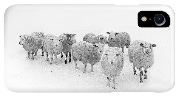 Winter iPhone XR Case - Winter Woollies by Janet Burdon