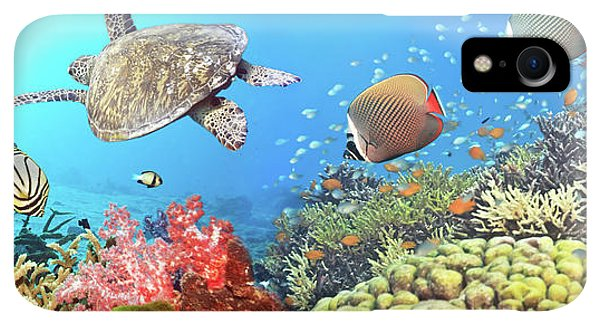 Scuba Diving iPhone XR Case - Underwater Panorama by MotHaiBaPhoto Prints