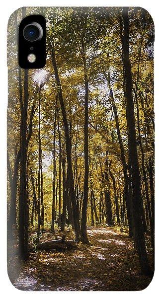 Kettles iPhone XR Case - Autumns Fire by Scott Norris