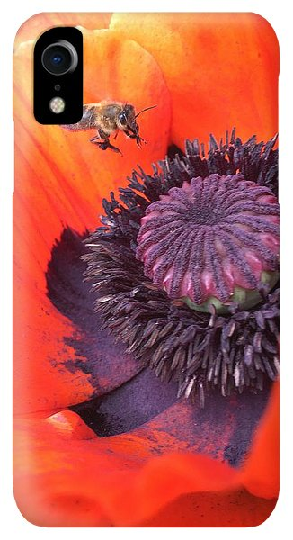 iPhone XR Case - Bee Is Visiting A Poppy by Orphelia Aristal
