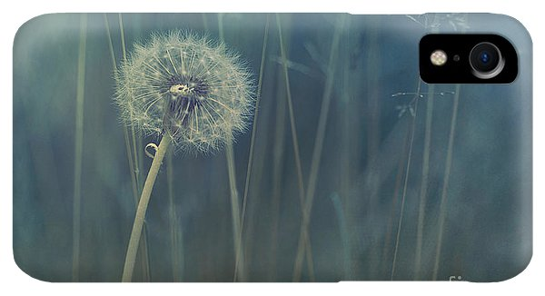 Scenic iPhone XR Case - Blue Tinted by Priska Wettstein