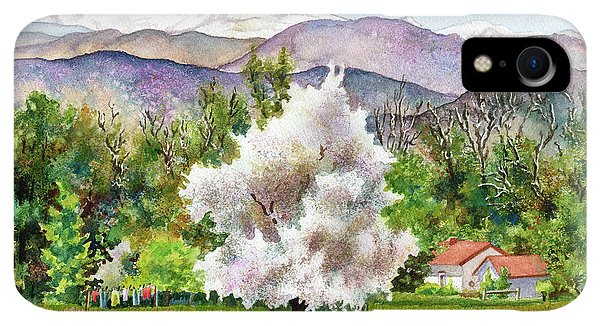 Rocky Mountain iPhone XR Case - Celeste's Farm by Anne Gifford