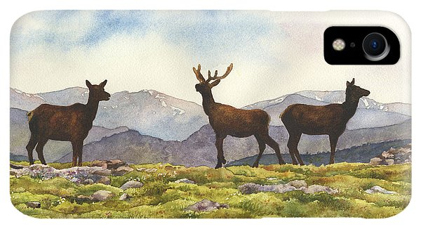 Rocky Mountain iPhone XR Case - Elk In The Evening by Anne Gifford