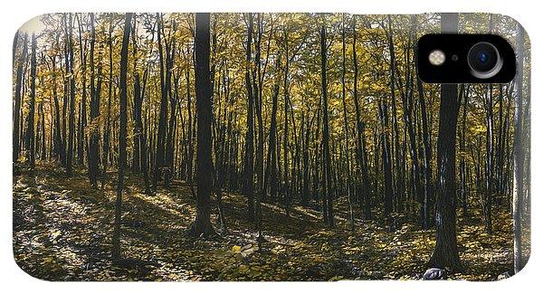 Kettles iPhone XR Case - Golden Woods by Scott Norris