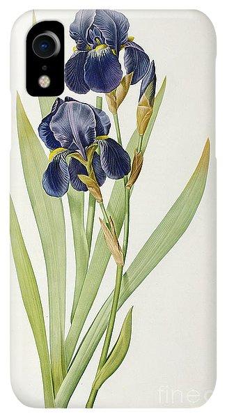 Violet iPhone XR Case - Iris Germanica by Pierre Joseph Redoute