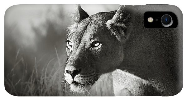 Scenic iPhone XR Case - Lioness Stalking by Johan Swanepoel