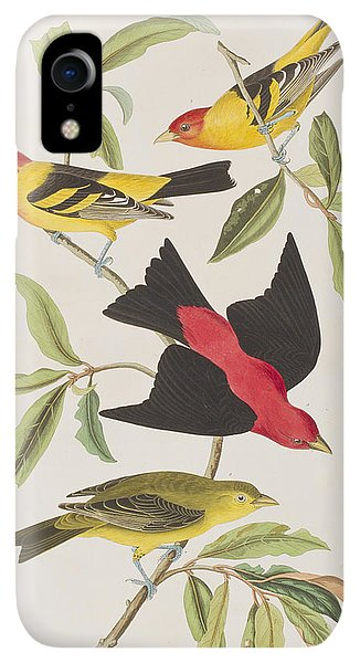 Scarlet iPhone XR Case - Louisiana Tanager Or Scarlet Tanager  by John James Audubon