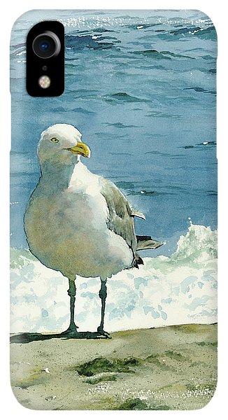 Print iPhone XR Case - Montauk Gull by Tom Hedderich
