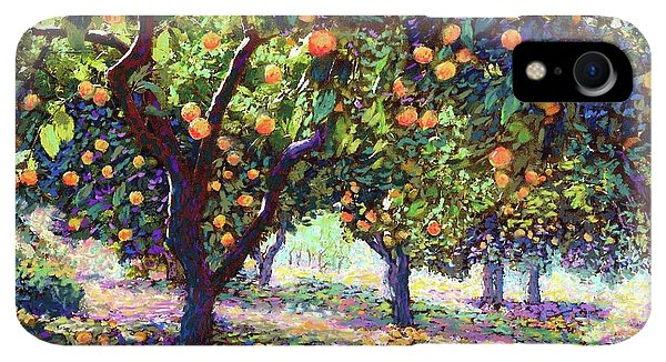 Violet iPhone XR Case -  Orange Grove Of Citrus Fruit Trees by Jane Small