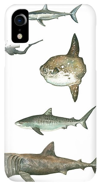 Scuba Diving iPhone XR Case - Sharks And Mola Mola by Juan Bosco