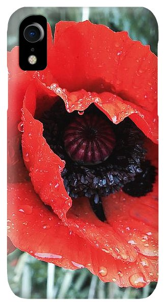 iPhone XR Case - Wet Poppy by Orphelia Aristal