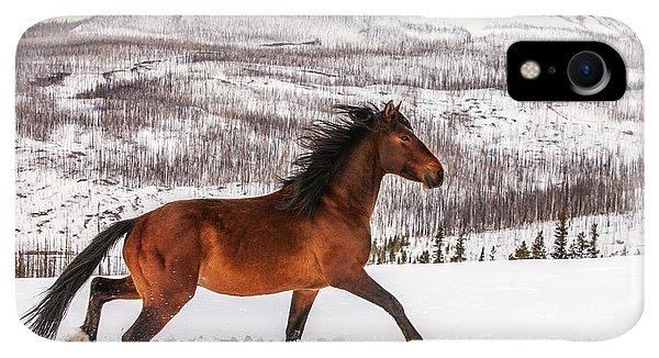 Winter iPhone XR Case - Wild Horse by Todd Klassy