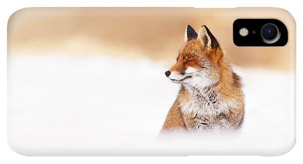 Winter iPhone XR Case - Zen Fox Series - Zen Fox In Winter Mood by Roeselien Raimond