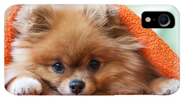 Small iPhone XR Case - Cute And Funny Puppy Pomeranian Smiling by Barinovalena