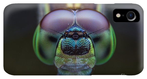 Small iPhone XR Case - Dragonflies, Insects, Animals, Focus On by Khlungcenter