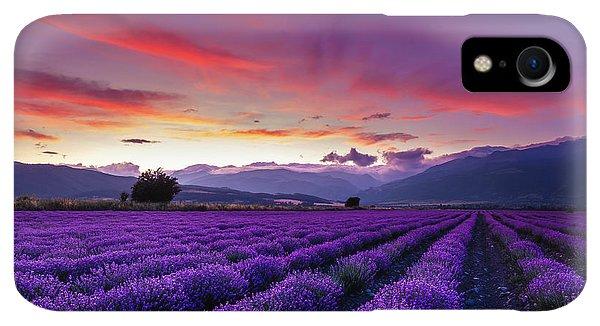 Violet iPhone XR Case - Lavender Season by Evgeni Dinev