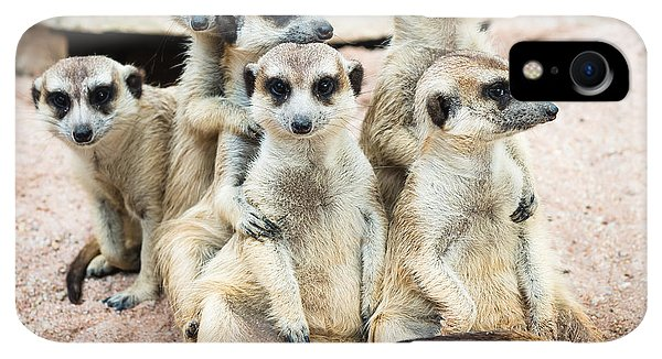 Small iPhone XR Case - Suricate Or Meerkat Family by Tratong
