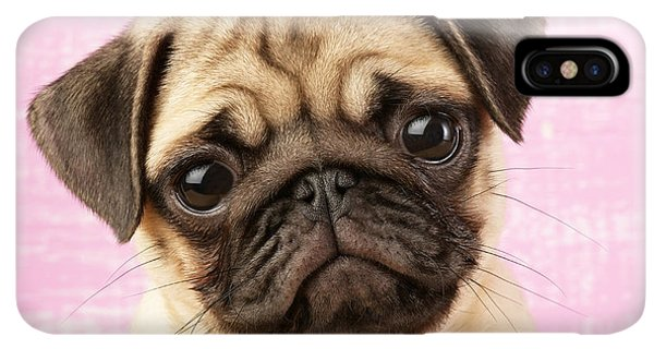 Pug iPhone XS Max Case - Pug Portrait by MGL Meiklejohn Graphics Licensing