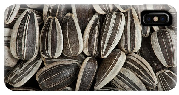 Sunflower Seeds iPhone XS Max Case - Sunflower Seeds by Pascal Goetgheluck/science Photo Library