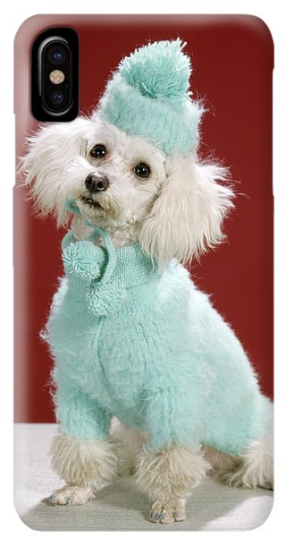 Knit Hat iPhone XS Max Case - 1970s White Poodle Wearing Blue Sweater by Animal Images