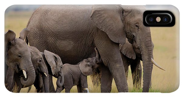 Africa iPhone XS Max Case - Big Family by Young Feng