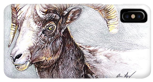 Rocky Mountain Bighorn Sheep iPhone XS Max Case - Bighorn Sheep by Aaron Spong