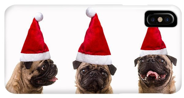 Pug iPhone XS Max Case - Christmas Caroling Dogs by Edward Fielding