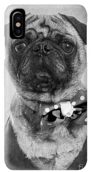 Pug iPhone XS Max Case - Dapper Dog by Edward Fielding