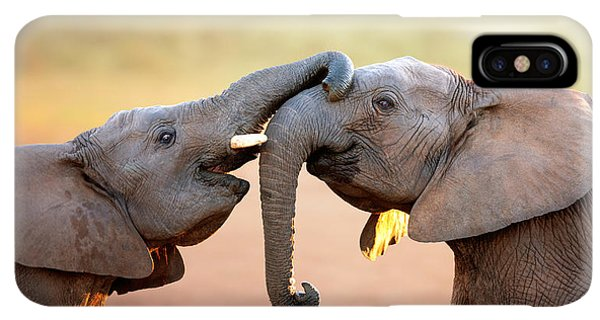 Africa iPhone XS Max Case - Elephants Touching Each Other by Johan Swanepoel