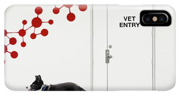 Puppies iPhone XS Max Case - Escape At The Vet by Jacqueline Hammer