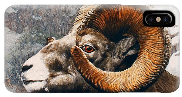 Rocky Mountain Bighorn Sheep iPhone XS Max Case - High Country Bighorn by Dreyer Wildlife Print Collections