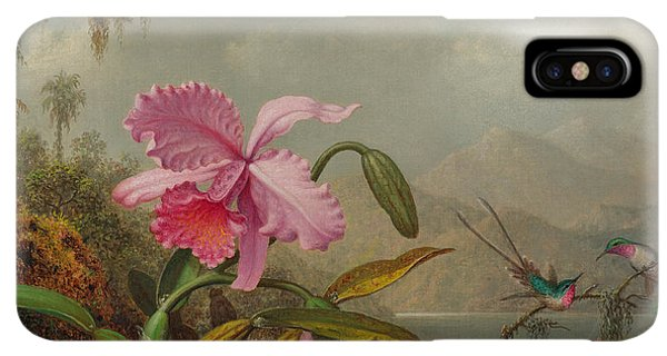 Humming Bird iPhone XS Max Case - Hummingbirds And Orchids by Martin Johnson Heade