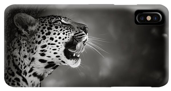 Africa iPhone XS Max Case - Leopard Portrait by Johan Swanepoel
