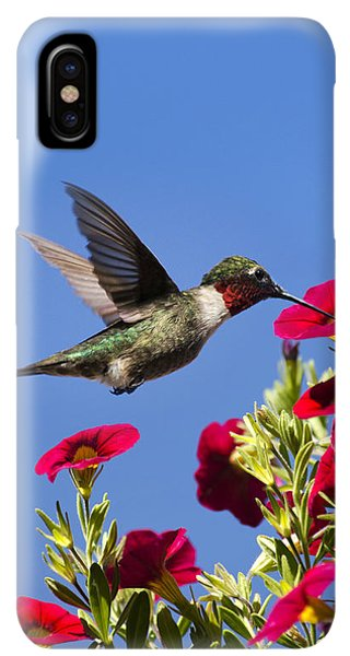 Humming Bird iPhone XS Max Case - Moments Of Joy by Christina Rollo