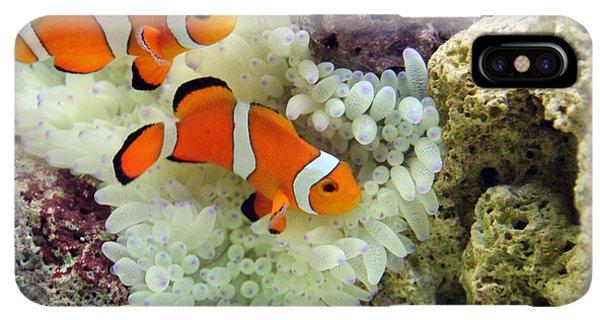 Scuba Diving iPhone XS Max Case - Nemo by Carey Chen