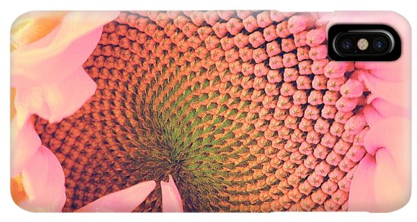 Sunflower Seeds iPhone XS Max Case - Pink Sunflower by Marianna Mills