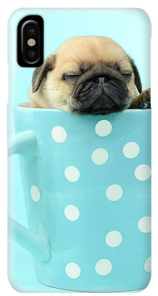 Pug iPhone XS Max Case - Pug In A Cup by MGL Meiklejohn Graphics Licensing