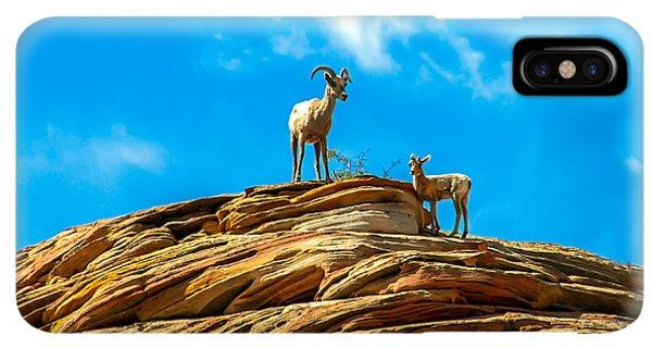 Rocky Mountain Bighorn Sheep iPhone XS Max Case - Queen Ewe by Robert Bales