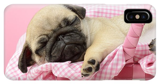 Pug iPhone XS Max Case - Sleeping Pug In Pink Basket by MGL Meiklejohn Graphics Licensing