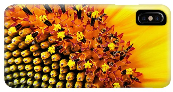Sunflower Seeds iPhone XS Max Case - Stars Of The Sun by Marianna Mills