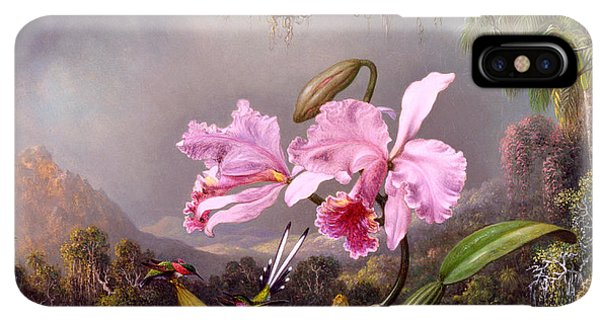 Humming Bird iPhone XS Max Case - Study Of An Orchid by Martin Johnson Heade
