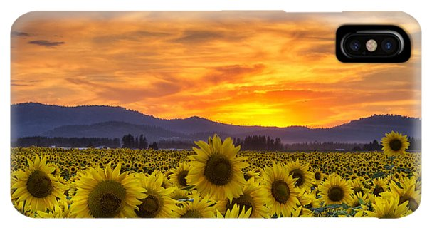 Sunflower Seeds iPhone XS Max Case - Sunflower Sunset by Mark Kiver