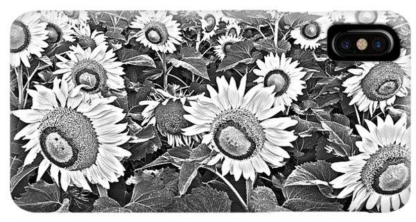 Sunflower Seeds iPhone XS Max Case - Sunflowers by Elena Nosyreva