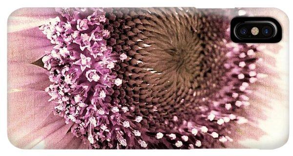 Sunflower Seeds iPhone XS Max Case - Vintage Sunflower  by Marianna Mills