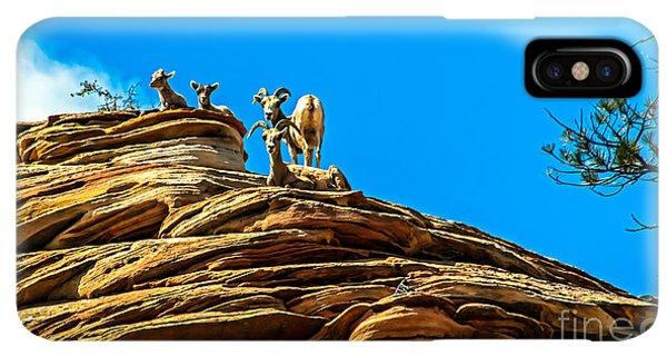 Rocky Mountain Bighorn Sheep iPhone XS Max Case - Zion Bighorn Sheep by Robert Bales