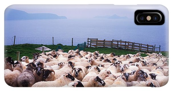 St. Patricks Day iPhone XS Max Case - Herding Sheep, Inishtooskert, Blasket by The Irish Image Collection