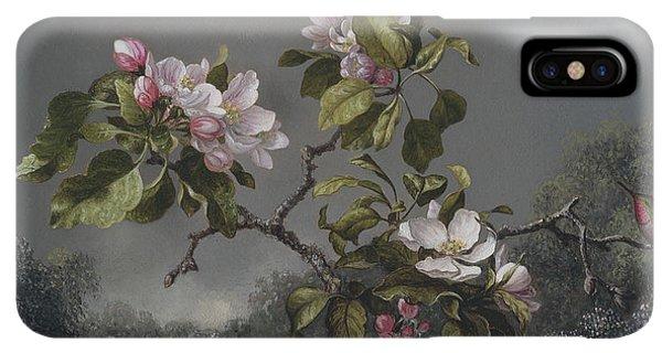 Humming Bird iPhone XS Max Case -  Apple Blossoms And Hummingbird by Martin Johnson Heade