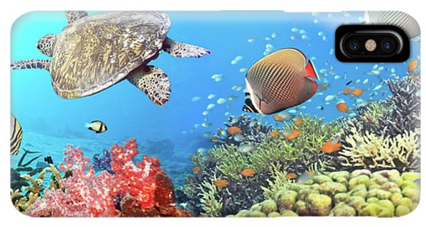 Scuba Diving iPhone XS Max Case - Underwater Panorama by MotHaiBaPhoto Prints