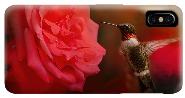 Humming Bird iPhone XS Max Case - After The Big Rose by Jai Johnson