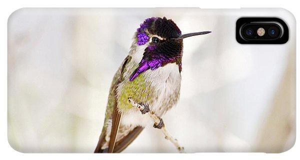 Humming Bird iPhone XS Max Case - Hummingbird by Rebecca Margraf